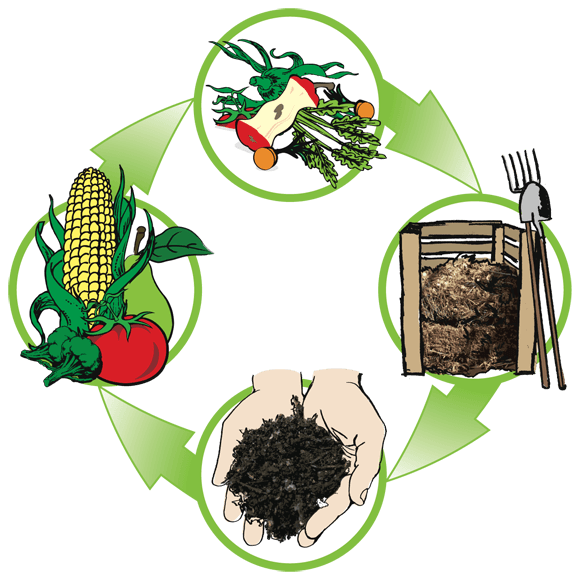 compost-cycle-3
