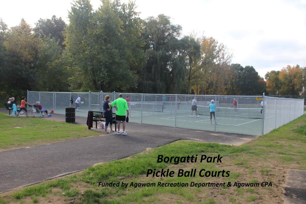 Borgatti Park Pickle Ball Courts