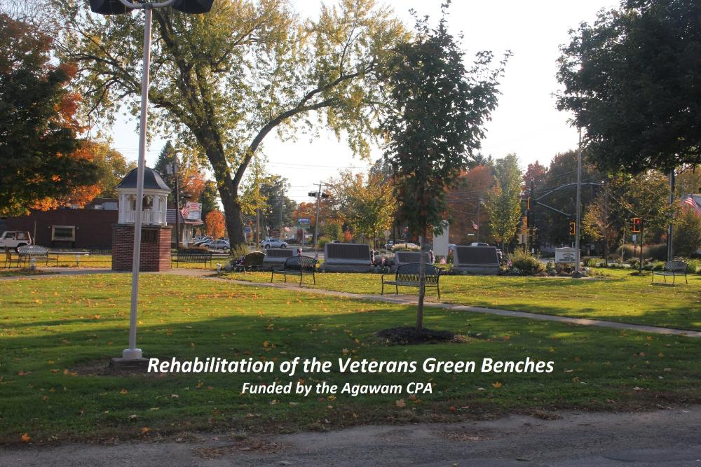 Rehabilitation of the Veterans Green Benches