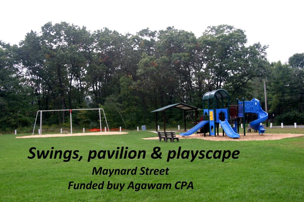 Swings, pavilion and playscape on Maynard Street